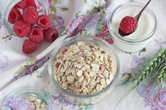 Granola with raspberry Royalty Free Stock Images