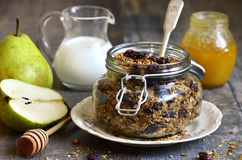Granola from rye and oat flakes with dried cranberries and cocon Royalty Free Stock Photos