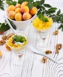 Granola sano de la avena del desayuno con el yogur, albaricoque en una luz Foto de archivo libre de regalías