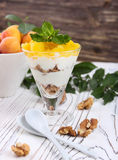 Granola sano de la avena del desayuno con el yogur, albaricoque en una luz Imagen de archivo libre de regalías