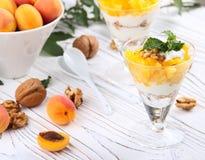 Granola sano de la avena del desayuno con el yogur, albaricoque en una luz Fotos de archivo libres de regalías