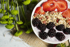 Granola. Served with fruits and yogurt royalty free stock photography
