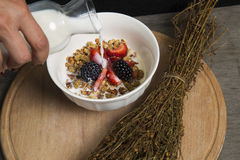 Granola. Served with milk and fruit stock photos