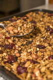 Granola and a Spoon. Granola with cranberries, being served with a spoon Stock Photography