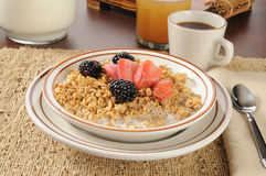 Granola with strawberries and blackberries Royalty Free Stock Photography