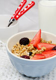 Granola with strawberries. Bowl of healthy muesli and fresh berries Royalty Free Stock Photo