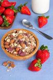 Granola and strawberries Royalty Free Stock Image