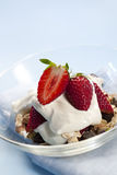 Granola with Strawberries and Yogurt Royalty Free Stock Photos