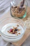 Granola on top of yogurt bowl Stock Photography