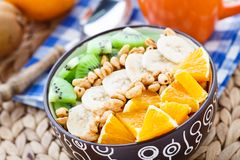 Granola with tropical fruits Stock Images