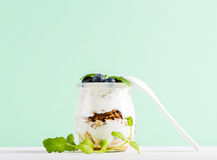 Granola van de yoghurthaver met jam, bosbessen en groene bladeren in glaskruik op muntachtergrond Stock Afbeeldingen