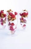 Granola-yoghurt parfait Royalty-vrije Stock Foto's