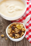 Granola and yogurt. Royalty Free Stock Photo