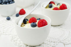 Granola with yogurt and berries Stock Images