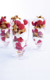 Granola-yogurt parfait Royalty Free Stock Photos