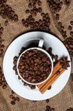 Granos, canela y anís de café en taza de café foto de archivo