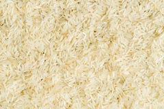 Granos cortos del arroz blanco crudo Foto de archivo libre de regalías