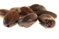 Granos de cacao Fotografía de archivo libre de regalías