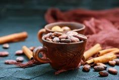 Granos de cacao imagen de archivo