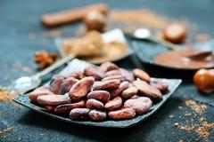 Granos de cacao imagen de archivo libre de regalías