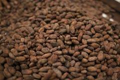 Granos de cacao asados Imagen de archivo