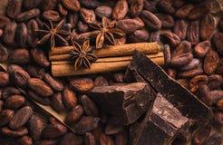 Granos de cacao crudos, chocolate negro delicioso, palillos de canela, sta imagen de archivo