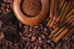 Granos de cacao crudos, chocolate negro delicioso, palillos de canela, sta Fotografía de archivo libre de regalías