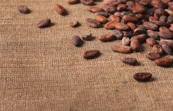 Granos de cacao crudos en el primer de despido fotos de archivo