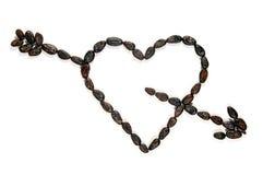 Granos de cacao en amor Imagen de archivo libre de regalías