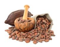 Granos de cacao en un bolso Fotos de archivo libres de regalías