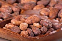 Granos de cacao en un tazón de fuente de madera Foto de archivo libre de regalías