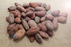 Granos de cacao Habas del cacao en un fondo de la arpillera foto de archivo libre de regalías