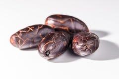 Granos de cacao pelados en el fondo blanco imagenes de archivo