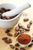 Granos de cacao y polvo de cacao Fotografía de archivo libre de regalías