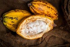 Granos de cacao y vaina del cacao en una superficie de madera fotografía de archivo