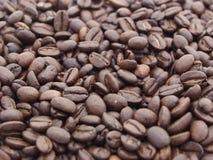 Granos de café. Imágenes de archivo libres de regalías