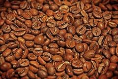 Granos de café Imagenes de archivo