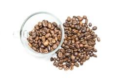 Granos de café aislados Imágenes de archivo libres de regalías