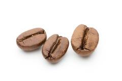 Granos de café aislados en el fondo blanco, primer, macro Imágenes de archivo libres de regalías