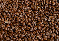 Granos de café asados imágenes de archivo libres de regalías