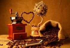 Granos de café asados Fotos de archivo libres de regalías
