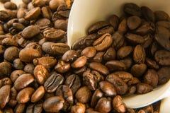 Granos de café asados cerca encima de la macro de la imagen Fotos de archivo