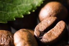 granos de café asados con cierre verde de la macro de la hoja encima del adorno Foto de archivo libre de regalías