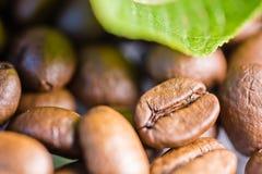 granos de café asados con cierre verde de la macro de la hoja encima del adorno Fotografía de archivo