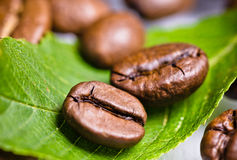 granos de café asados con cierre verde de la macro de la hoja encima del adorno Imagen de archivo