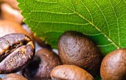 granos de café asados con cierre verde de la macro de la hoja encima del adorno Imagen de archivo libre de regalías