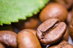 Granos de café asados con cierre verde de la macro de la hoja para arriba Fotografía de archivo