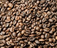 Granos de café asados dispersados sobre la superficie entera del bastidor Fondo imagenes de archivo