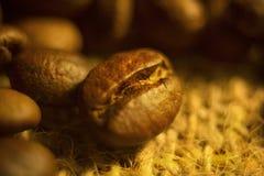 Granos de café asados en un fondo amarillo foto de archivo