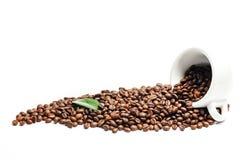 Granos de café asados frescos brillantes con el cuo y la hoja aislados en w Foto de archivo